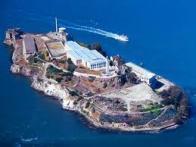 Imagem de alcatraz