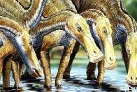 Imagem de dinossauro-bico-de-pato
