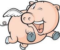 esp�rito de porco