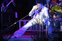 Ryan Pelton--professional ETA--Elvis Tribute Artist