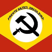 Bandeira da Frente Nazbol