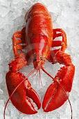 Imagem de lagosta