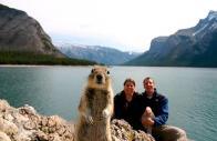 Esquilo mequetrefe