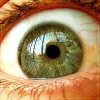 Imagem de olhos-grandes