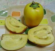 tomate-de-índio