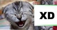 xD   (rosto sorridente)